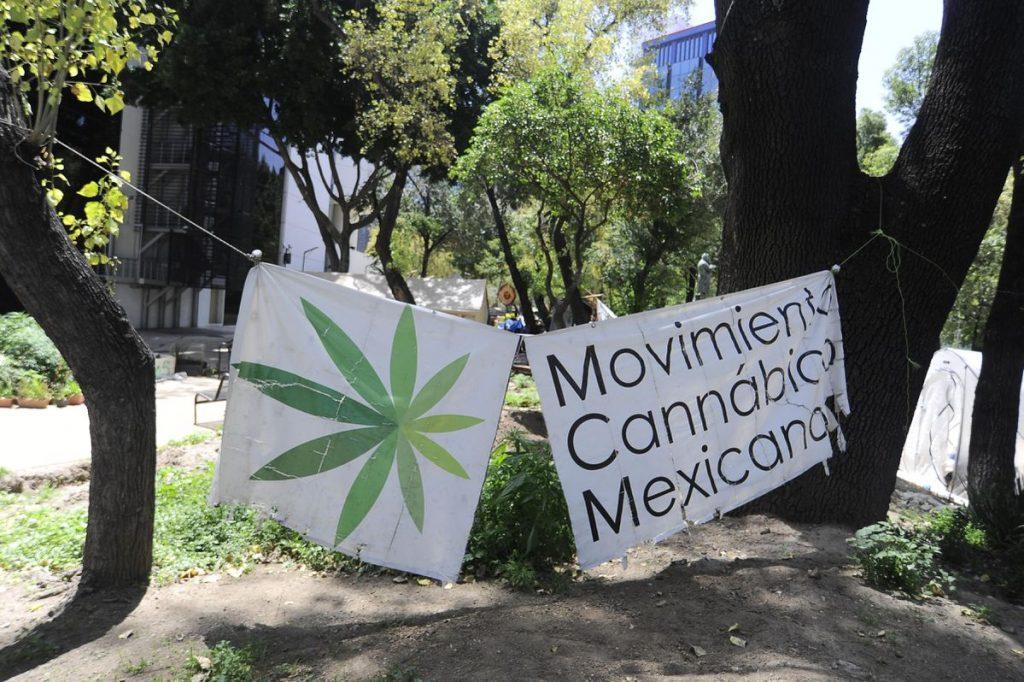 el mercado más grande de Cannabis