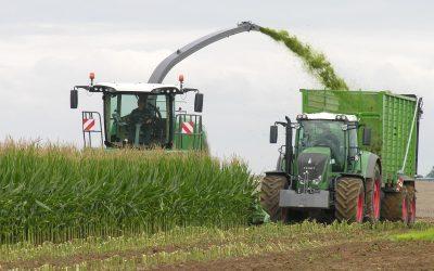 Sectores económicos de España: La agricultura se fortalece pese al covid